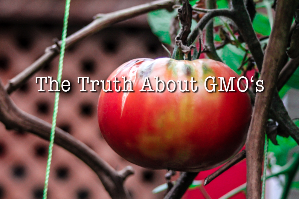 What They are Not Telling You about GMO's