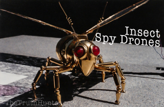 Is This a Top Secret NSA Insect Spy Drone?