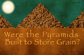 Were the Pyramids Built to Store Grain?